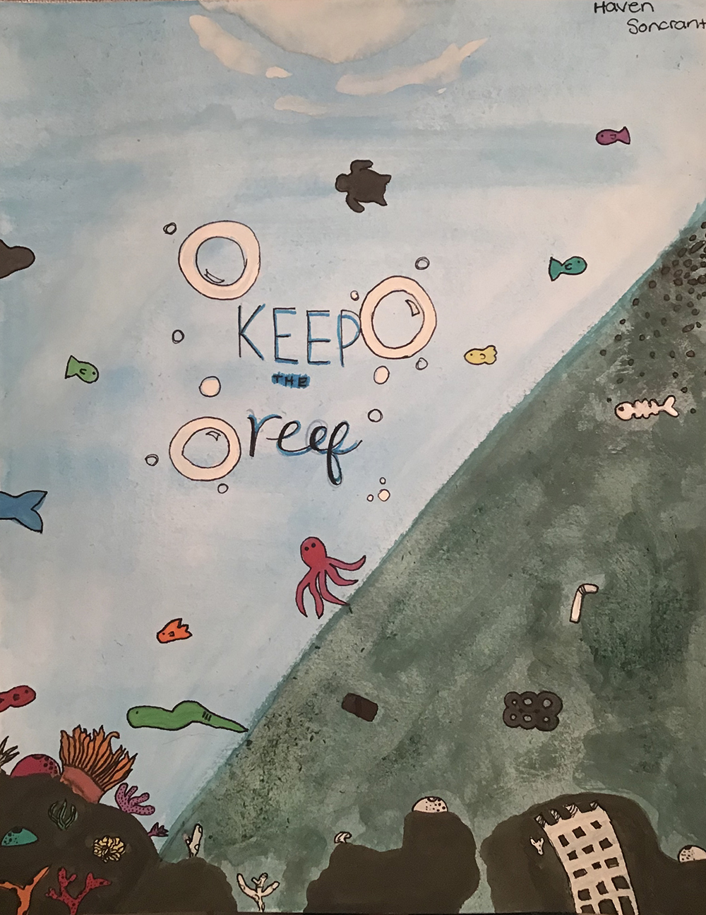 Reef Pollution_Haven